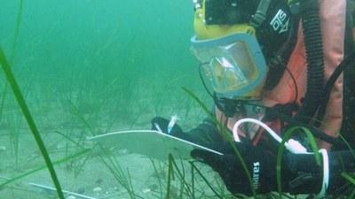 Scientific Diving Center